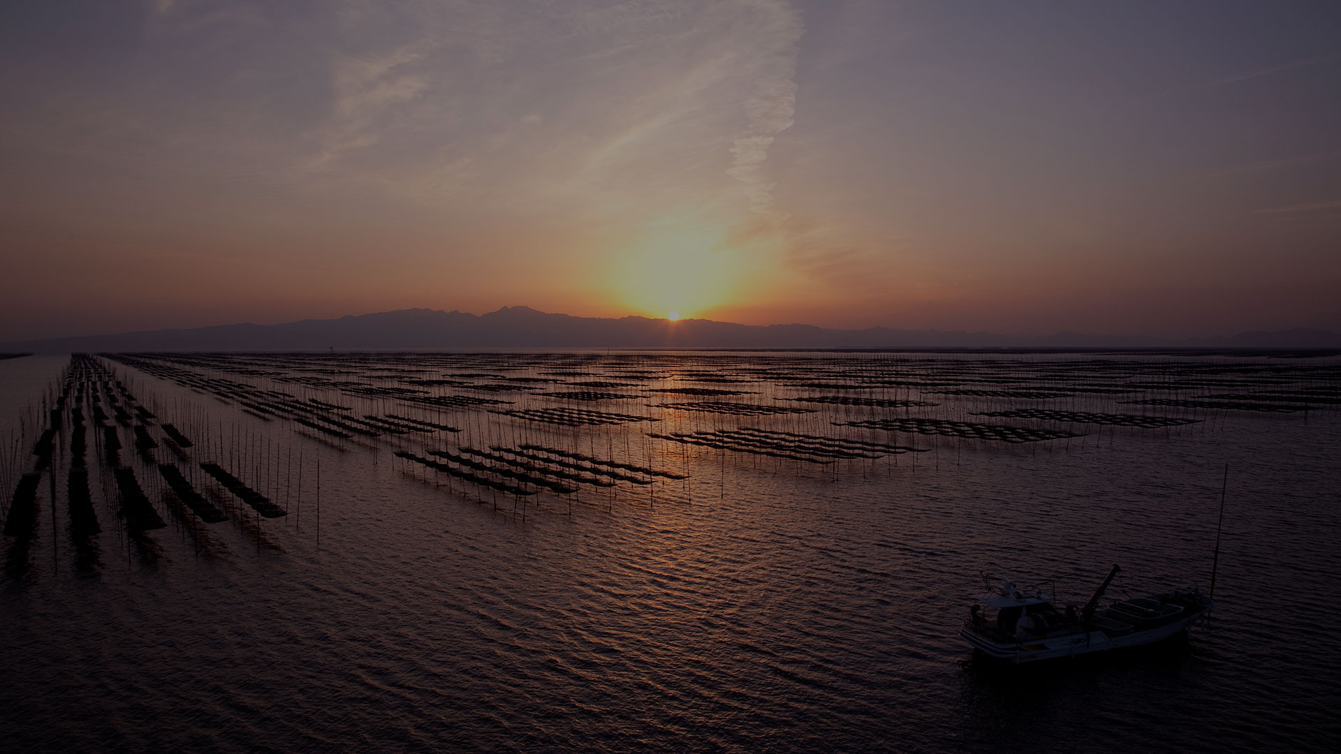 Seaweed Farm picture